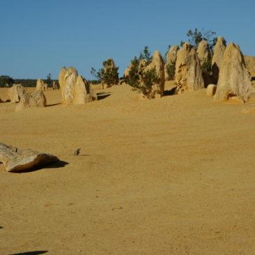 Der gelbe Sand ist recht grobkörnig, aber sehr intensiv in der Farbe