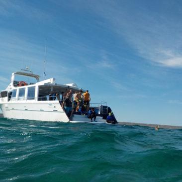 Blick zurück auf's Boot beim Probeschnorcheln