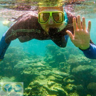 Bitte recht freundlich - auch unter Wasser