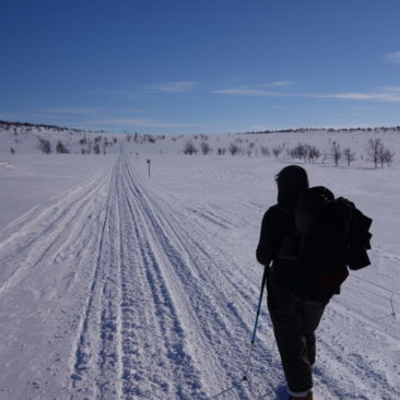 Fast schon eine Schneeschuhautobahn